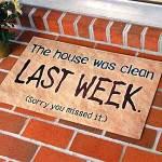 clean_house1